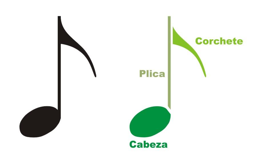 partes de las figuras musicales